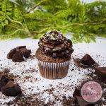 Cupcake Chocolate Temptation